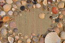 variety of seashells on straw mat