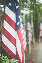 path lined with American flags