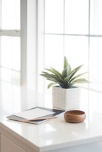 house plant, journal, and wood bowl on a countertop by a window