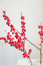 red berries on twigs in a vase