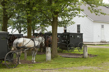 Amish horses and buggies at meeting house (church)