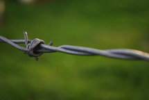 Single barbed wire on a fence.