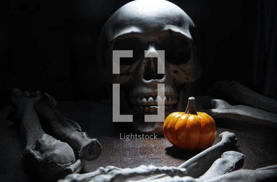 skeleton and pumpkin