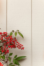 red berries on white wood background