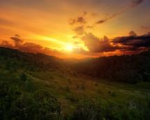 A beautiful, golden sunset.