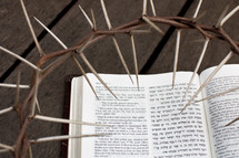 Jesus is the King of the Jews - Hebrew/English Bible with Crown of Thorns