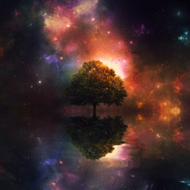 tree in a cosmic scene