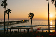 silhouettes of palm trees and a pier at sunset