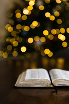 open Bible in front of a Christmas tree