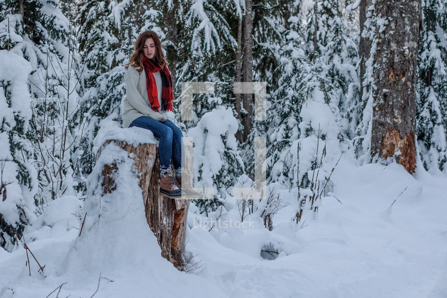 a woman sitting on a tree stump outdoors in snow