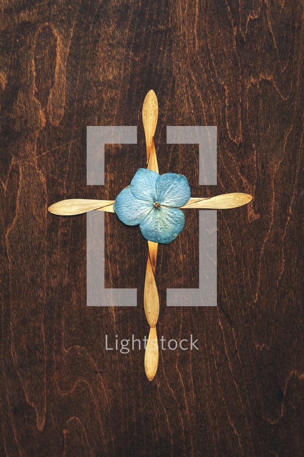 cross of flower petals
