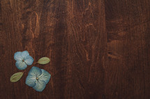 blue flowers on wood background