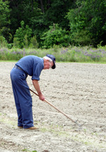 An elderly man in a blue outfit gardens in a freshly plowed field with a hoe to plant a garden and rows of food to raise.