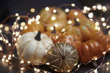 fairy lights and pumpkins