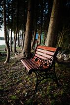 bench by a lake shore