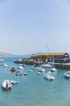 crowded harbor