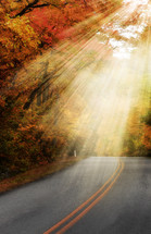 rays of sunlight shining on a road