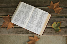 an open Bible on a bench in fall