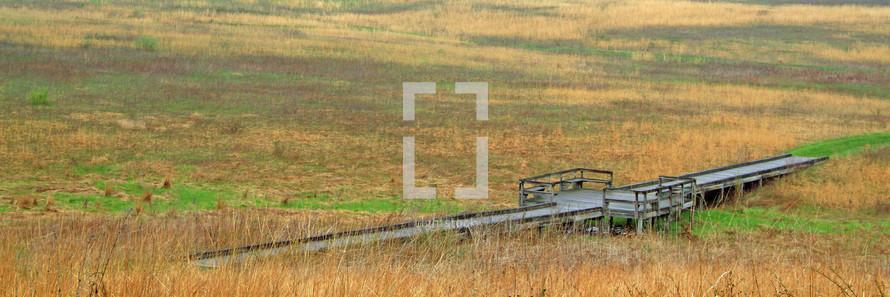 bridge over a marshy field