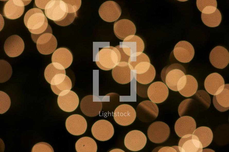 Gold Christmas lights.