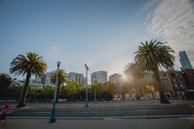 Palm trees and street lamps lining the streets of San Francisco