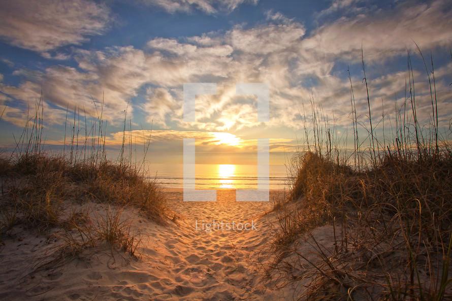 A beach at daybreak