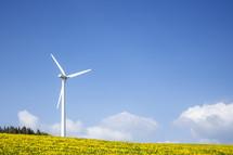 wind turbine in a field of yellow flowers