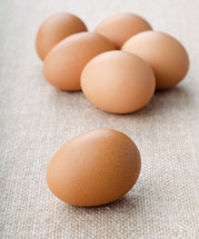 Natural chicken  eggs on burlap background