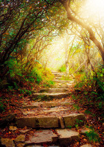 rays of sunlight through the tree top shining on steps on a forest path