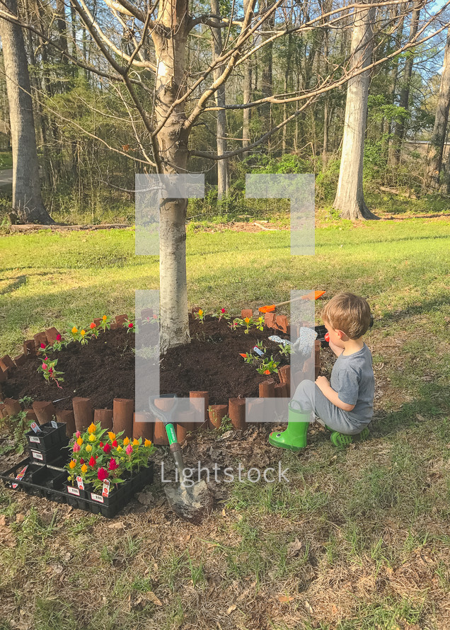 toddler boy planting spring flowers