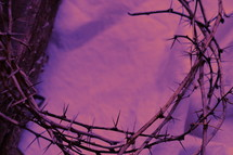 crown of thorns on a purple sheet