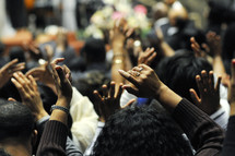congregation with their hands raised in praise and worship to God