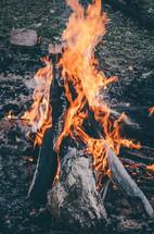 a campfire burning