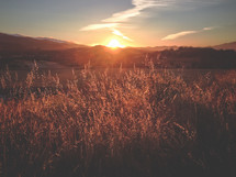 sunset behind hills and a golden field