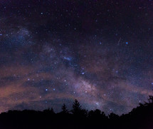 stars in the night sky above the tree line