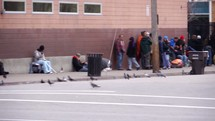 a line at a homeless shelter and pigeons