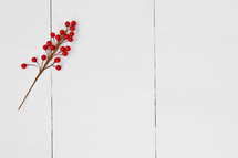 red berries on white