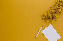 yellow orchids on a yellow background and notepad