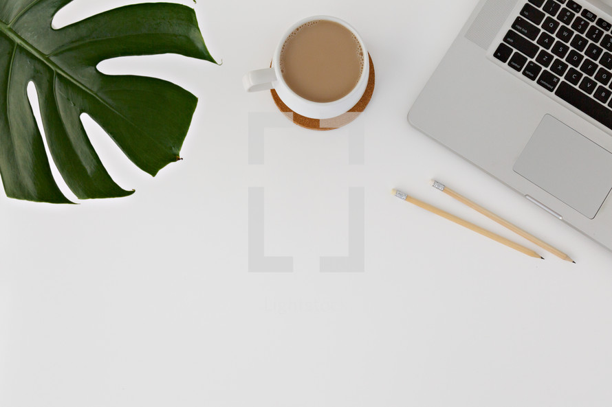 tropical leaf, coffee cup, and laptop computer on a white desk