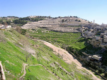 The eastern slope of the City of David and the Mount of Olives.