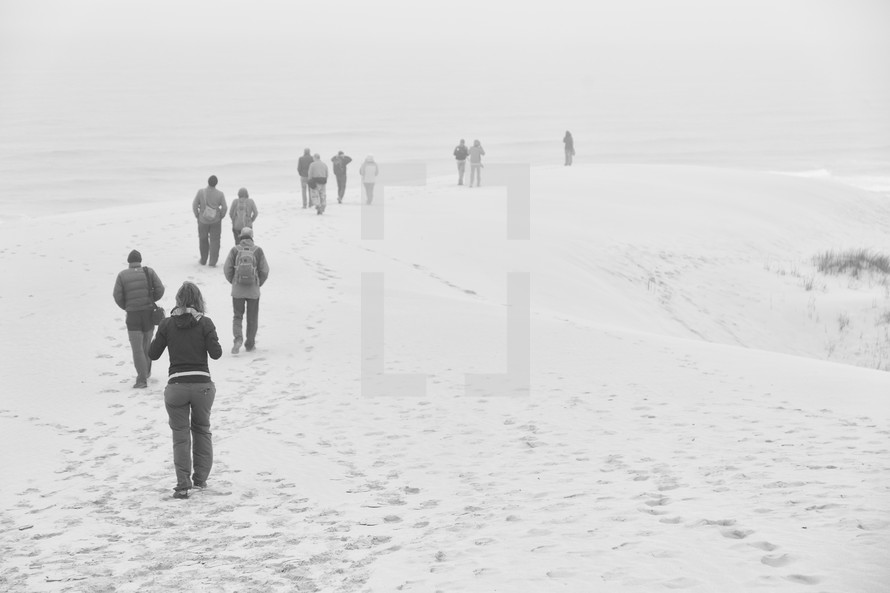 people walking on a beach in the fog