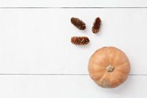 pine cones and orange pumpkin on a white background