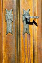 brass door handle on a wood door