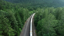 train on tracks traveling through a forest