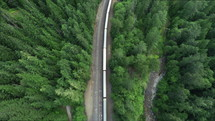 train traveling through a forest