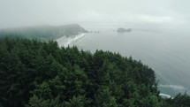 aerial view over a misty coastline