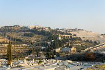 The Mount of Olives from the northwest.