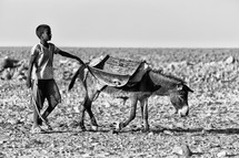 a child with a donkey in the desert in Ethiopia