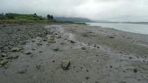 a muddy shoreline