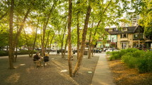 Park in Yorkville Square Toronto
